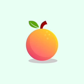 Fruit orange vector design template