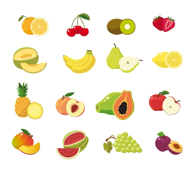 Fruit set in blank background