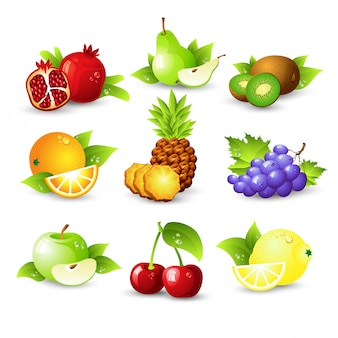 Fruit set illustration