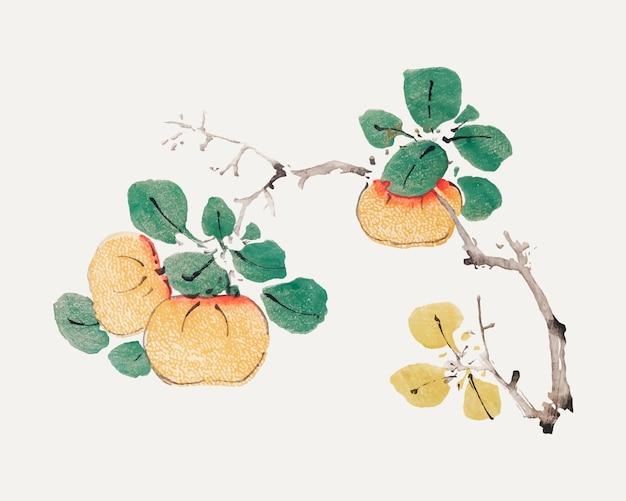 胡正言のアートワークからリミックスされたフルーツベクター植物画プリント