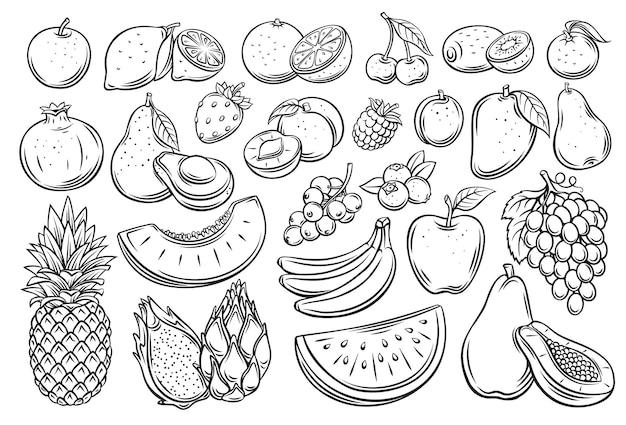 과일과 열매는 벡터 아이콘 세트를 설명합니다. 흑백 라즈베리, 아보카도, 포도, 복숭아, 전체, 절반, 체리, 망고, 수박 조각을 그렸습니다. 귤, 레몬, 살구 등