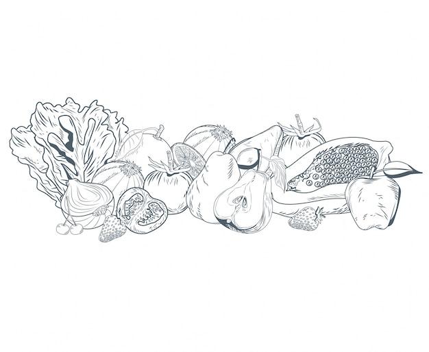果物や野菜の手描き