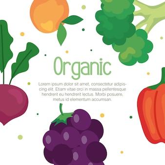 果物と野菜の有機、コンセプトの健康食品