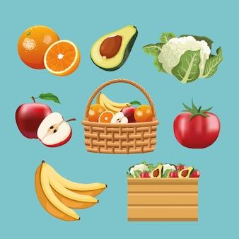 과일 및 야채