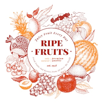 Fruits and berries hand drawn vector background illustration.