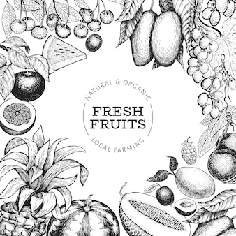 Fruits and berries  template. hand drawn  tropic fruits illustration. engraved style fruit. retro exotic food .