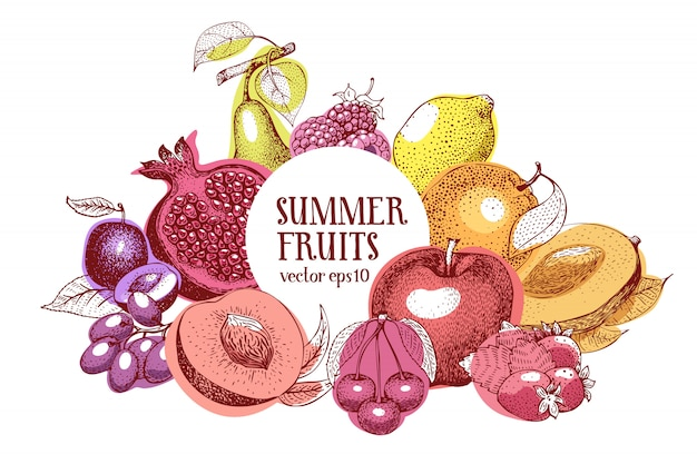 Fruits hand drawn vector frame. banner template