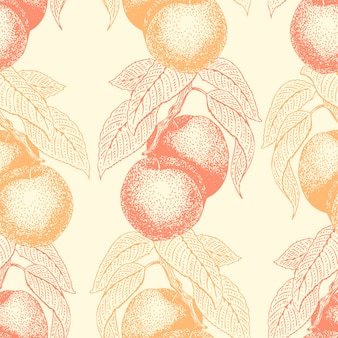 Fruits hand drawn vector seamless pattern with peach