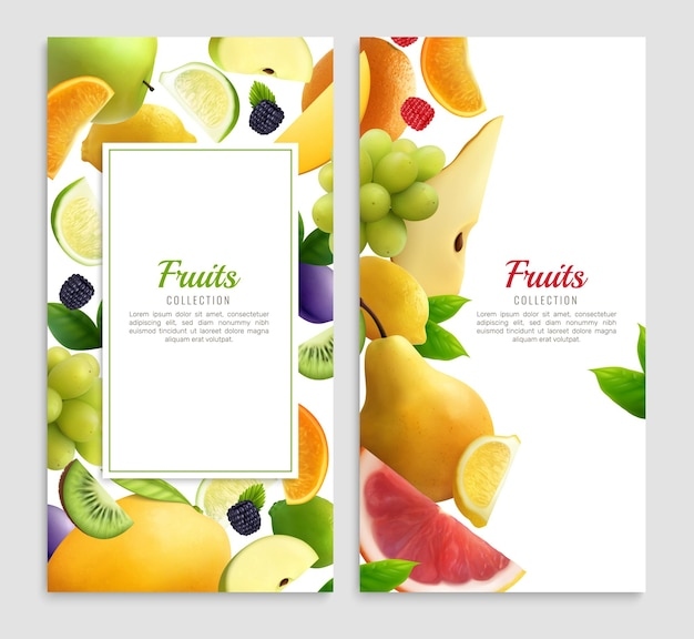 Fruits realistic design set of two vertical with frames editable text and fruit slice  illustration
