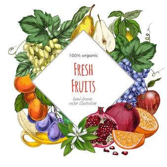 Шаблон баннера фрукты ромб
