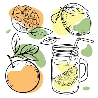 白い背景の図にオレンジ、黄色、緑の色のスプラッシュと果物のスケッチ