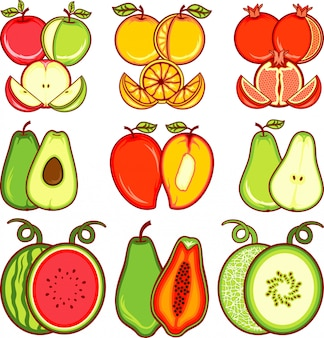 Fruits slice vector
