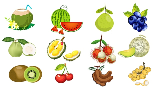 The fruits of thailand are rambutan, durian, guava, watermelon, tamarind, coconut.