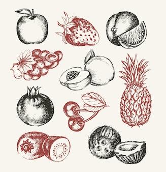 果物-ベクトル現代手描きデザインイラストセット。ブドウ、さくらんぼ、パイナップル、イチゴ、ココナッツアップル