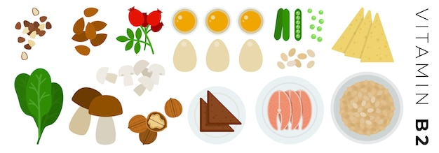 Фрукты, овощи и продукты животного происхождения, изолированные на белом фоне