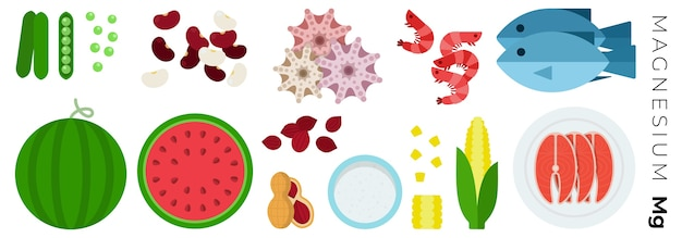 Fruits vegetables and animal products isolated on white
