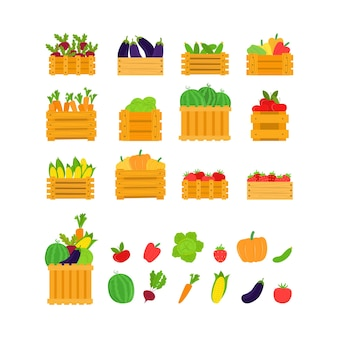 Fruits, vegetables in box, vector illustration. healthy food set, organic fresh vegeterian product collection. flat harvest carrots, beets, eggplant, cucumber and ripe tomate in wooden basket.