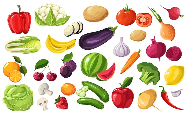 Fruits and vegetables seasonal products, harvested veggies. beetroots and onions, cabbage and bell pepper, cucumber and eggplant or aubergine. broccoli and banana, cherries vector in flat style