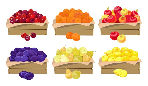 Fruits in wooden boxes