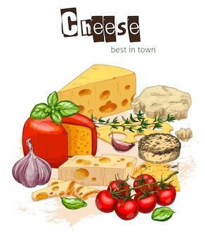 Full color realistic sketch illustration of cheese and herbs with basil and tomatoes