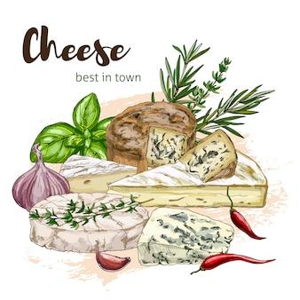 Full color realistic sketch illustration of mozzarella