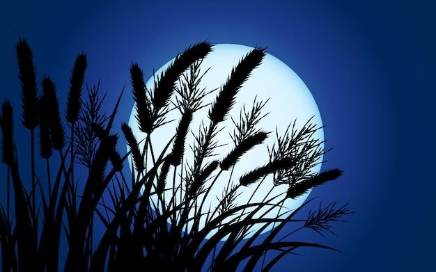 Full moon behind grass