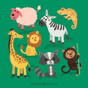 웃는 동물의 재미있는 컬렉션