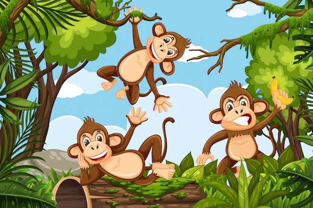 Fun monkeys in jungle scene