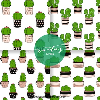 Fun pack of hand drawn cactus patterns