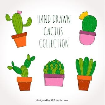 Pacchetto divertente di cactus disegnato a mano