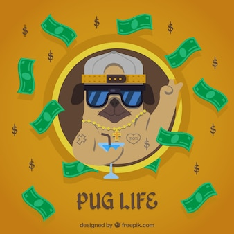 Fun pug with gangster style