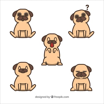 Fun set of lovely pugs