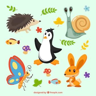 Интересное разнообразие прекрасных животных