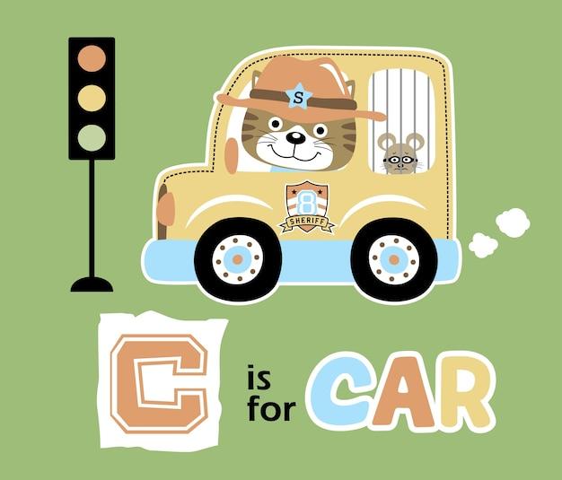 Funny animals on car