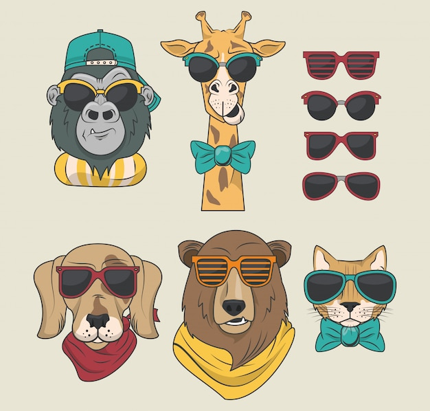Funny animals with sunglasses cool style