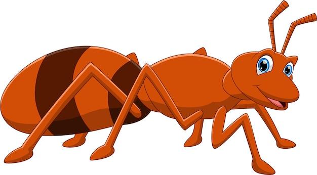 Мультфильм смешной муравей