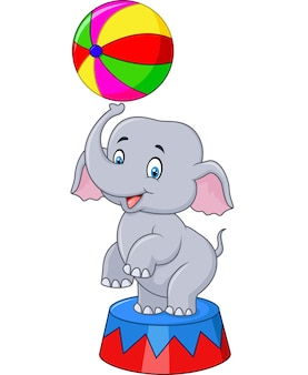 Funny baby elephant with a striped ball stands on a scene