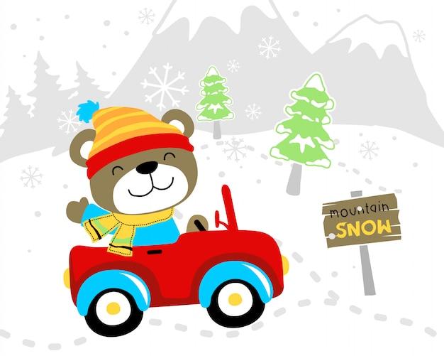 Funny bear cartoon on car at winter