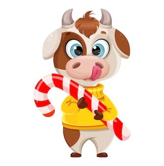 大きなキャンディの杖を保持している面白い牛