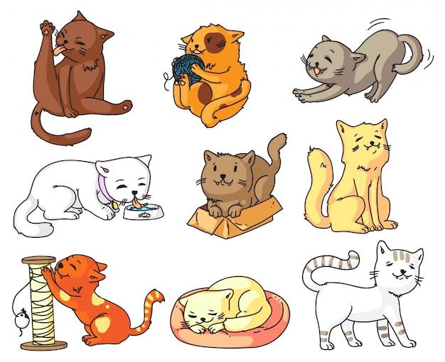 Funny cartoon cat set  on white background