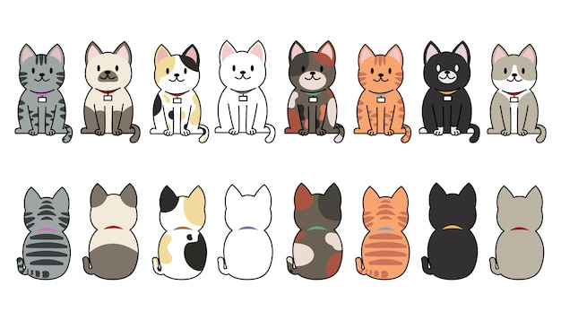 Funny cartoon cats breeds set.