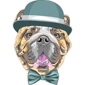 Funny cartoon hipster dog english bulldog breed