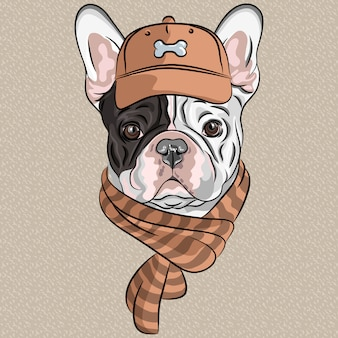 Funny cartoon hipster dog french bulldog breed