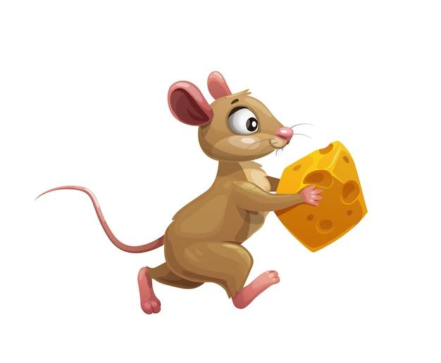 치즈 벡터 귀여운 작은 설치류 동물 캐릭터가 있는 재미있는 만화 마우스. 노란 스위스 치즈 조각을 가지고 달리는 갈색 쥐나 쥐, 음식을 훔치는 배고픈 쥐, 고립된 배경