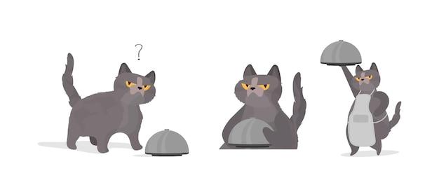 面白い猫はふた付きの金属皿を持っています。変な顔の猫。ステッカー、カード、tシャツに最適です。孤立。ベクター。