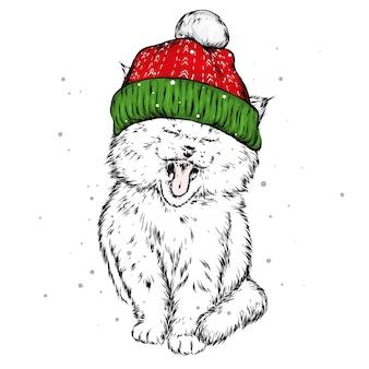Забавный кот в новогодней шапке.