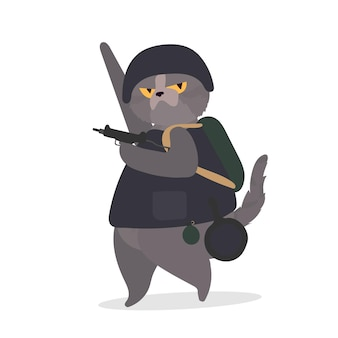 A funny cat with a serious look holds a gun in its paws. Premium Vector
