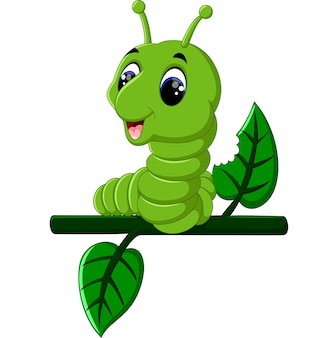 재미있는 애벌레는 나뭇 가지에서 실행