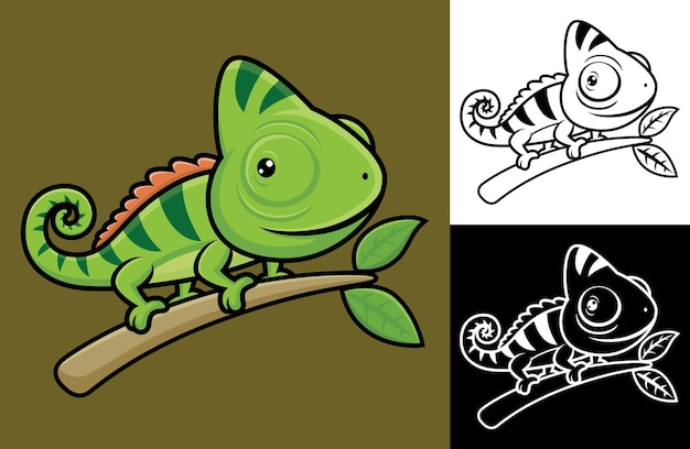 Funny chameleon on tree branches.   cartoon illustration in flat icon style