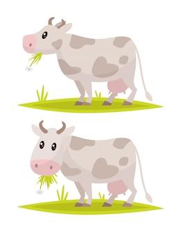 Funny cow set.